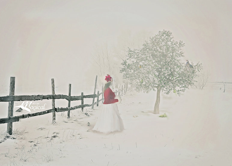 Partridge in a Pear Tree - Christmas backdrop