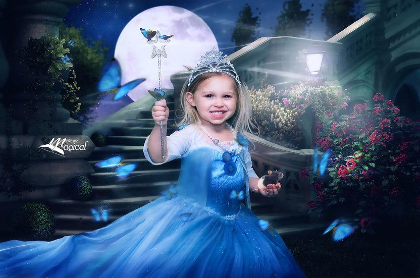 Princess Cinderella Castle Stairs digital Backdrop