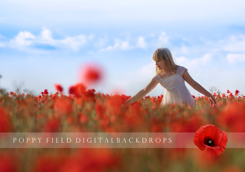 Poppy Field digital backdrops - 24 x poppy digital backgrounds for photoshop