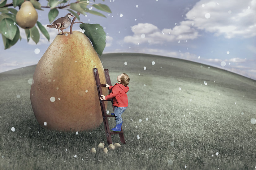 12 Days of Christmas - Partridge in a Pear Tree Digtal Backdrop