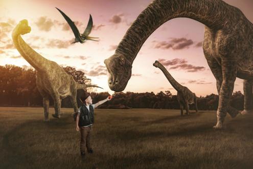 Makememagical Dinosaur Background 1.jpg