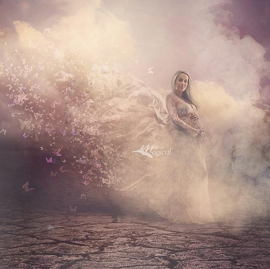 Magical butterlfy swam overlay | Dress shatter butterfly overlay