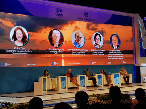 An IMF Conference in Jakarta (Feb 2018)