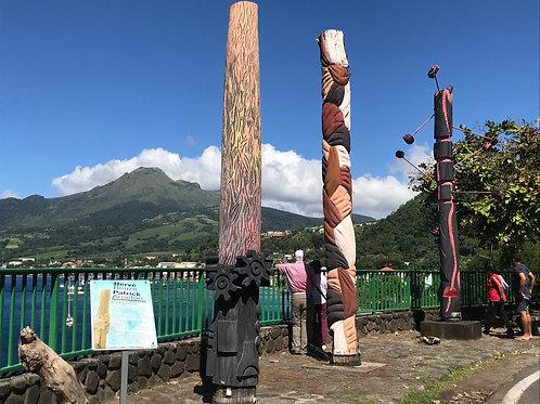 Martinique Panoramic Tour from Le Prêcheur