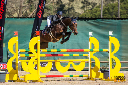Bella Notte - Show Jumping.jpg