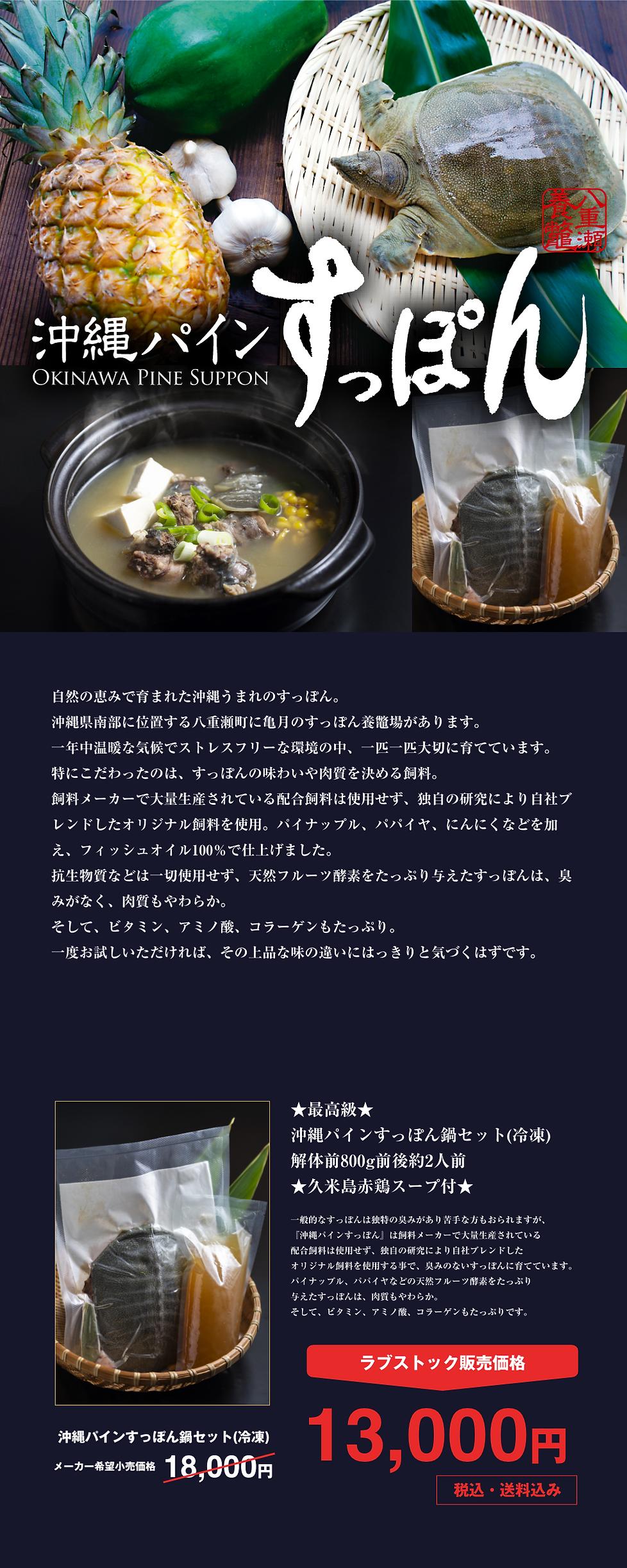 沖縄亀月0531.png