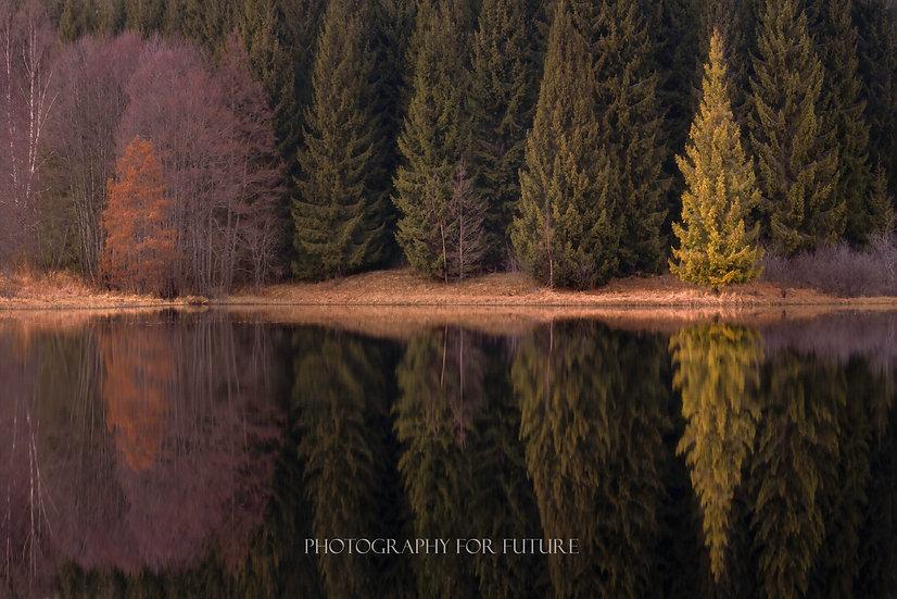 Luksefjell Reflections