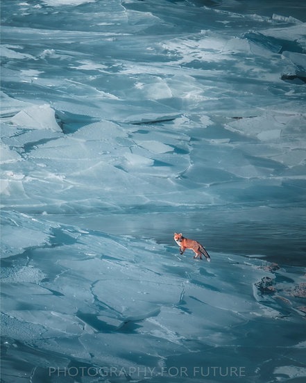 A Red Glimpse on Ice