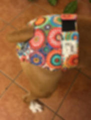 Panty Butt.jpg