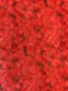 Fabric Roses.jpg