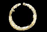 goldcircle_edited_edited_edited.png