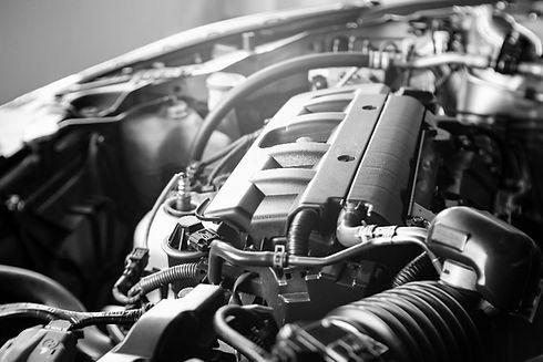 Terraclean-engine-bw-min.jpg