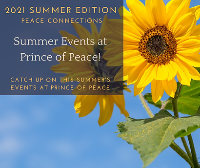 Summer Peace Connections (1).png
