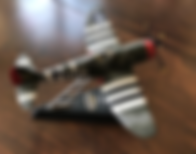 P47 Model Photo Cropped.png