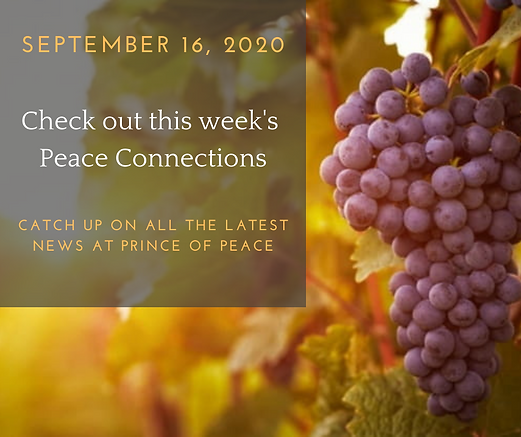 Peace Connections Ad (1) 7.43.15 AM.png