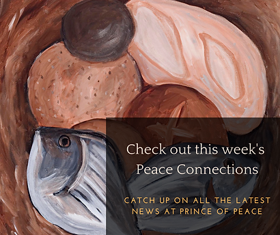 Peace Connections (1).png