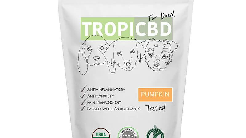 CBD Pumpkin Dog Treats (4mg)
