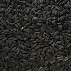 Black Oil Sunflower Seeds 12.75kg