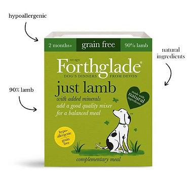 Forthglade Just Lamb Tray Wet Dog Food - 395g