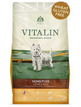 Vitalin Sensitive Adult Lamb and Rice Dry Dog Food 12kg