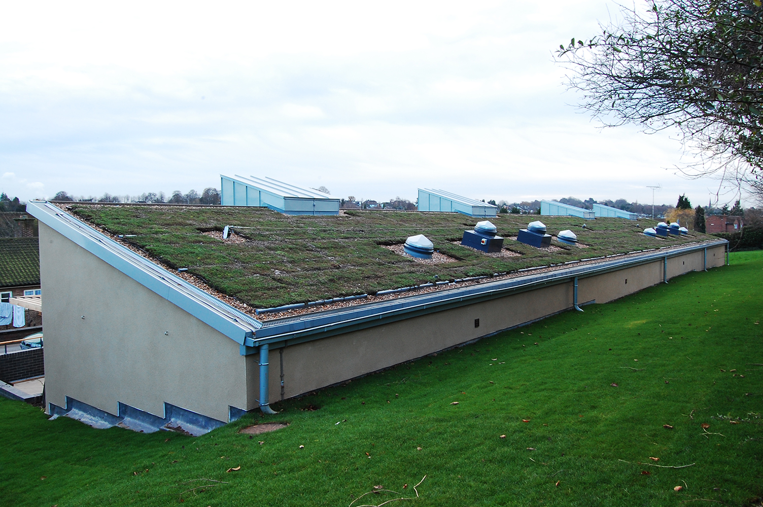 green roof with roof lights