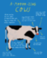 cow sketch stage 2 option 2.jpg