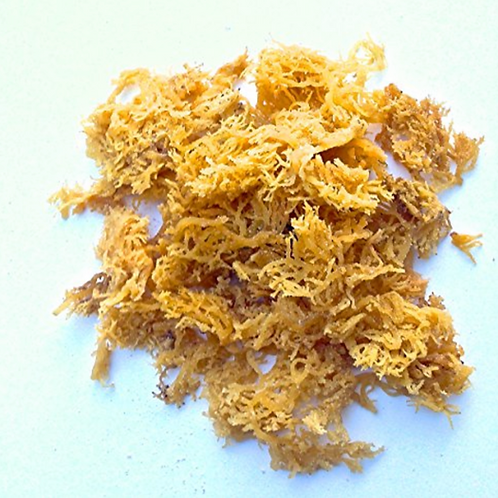 Organic Wild Crafted Sea Moss