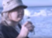 Screen Shot 2017-02-02 at 21.42.23.png