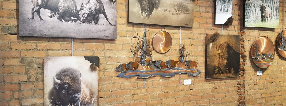 Gallery Store Display