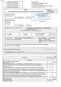 Податковий звіт