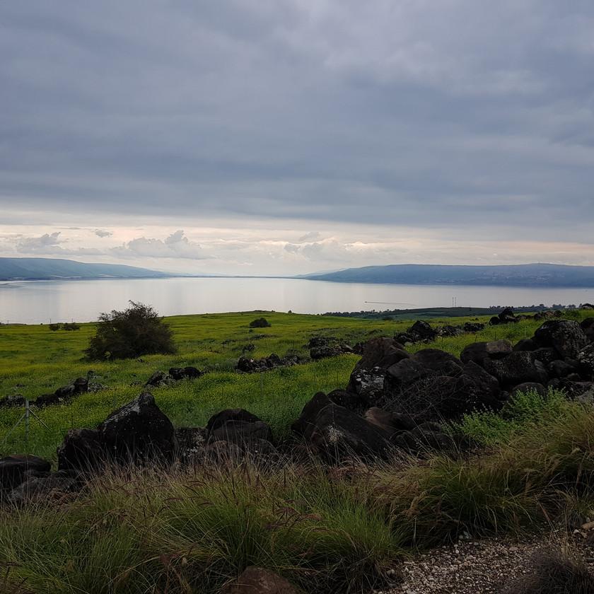 צימרים בישוב חד נס מול החוף הצפוני של הכנרת - Eden's