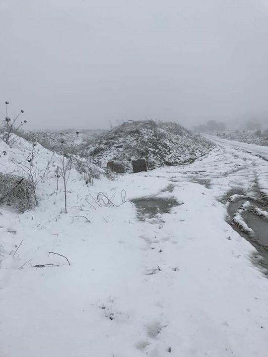 צימרים באזור מרום גולן ברמת הגולן