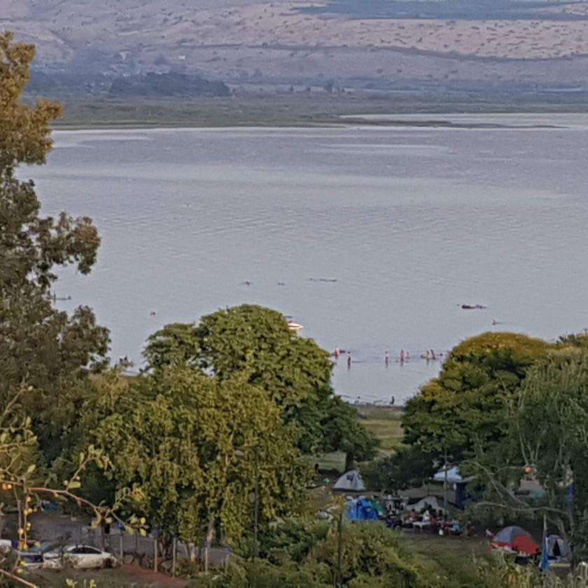 צימרים יוקרתיים ברמת הגולן בקרבת חופה הצפוני של הכנרת