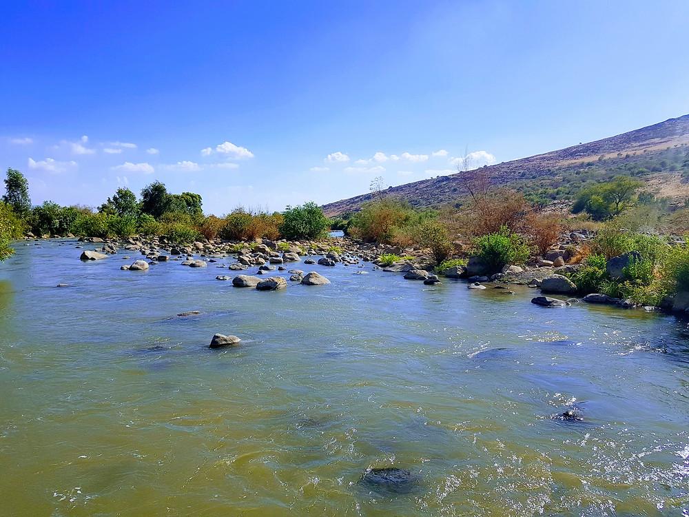 שפך נהר הירדן אל צפון הכנרת מרחק נגיעה ממתחם צימרים יוקרתיים ברמת הגולן לזוגות