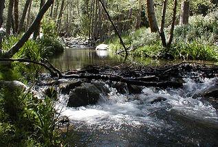 River2H.jpg