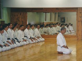 Training with Tanaka Sensei