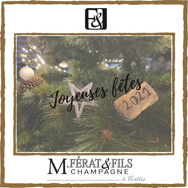 Joyeuses fêtes-3.png