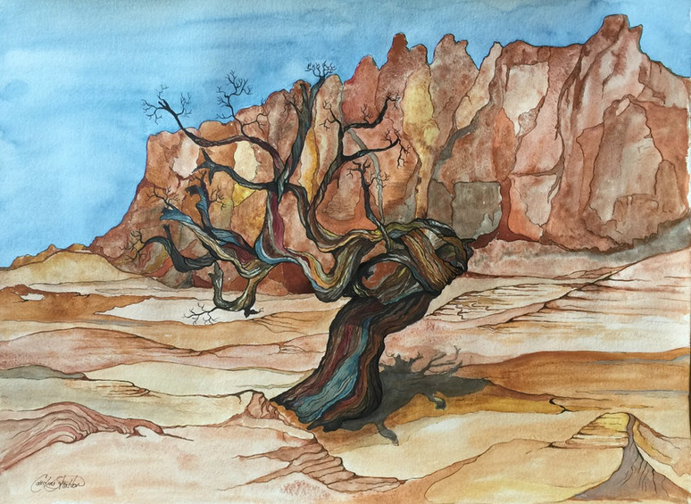 Capitol Reef Old One (sold)