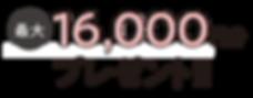 16000プレ.png