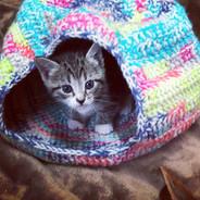 Tilda in Kitten Cave