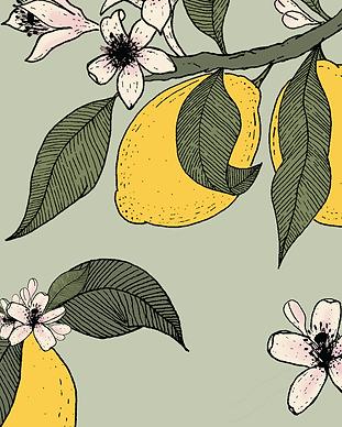 Lemon tree branch.png