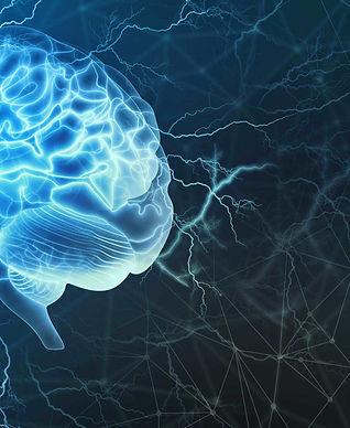 human_brain 01.jpg