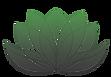 logo_gradient_transparent.png