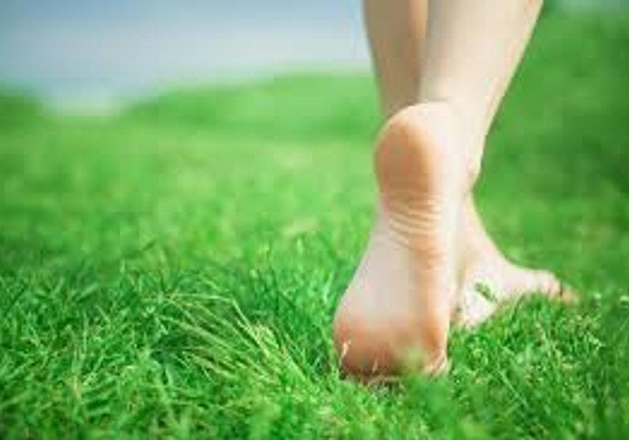 MINDFULGym: Mindful Walking