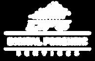 DFS Logo White.png