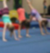 omega-kinderkids-4to6yrs-gymnastics_edit
