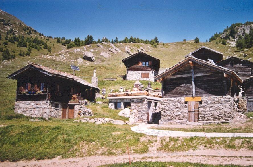 Walliser Schwarzhalsziegen 93-2001 023.jpg
