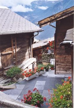 Walliser Schwarzhalsziegen 2001-2004 043.jpg