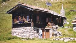 Walliser Schwarzhalsziegen 93-2001 021.jpg