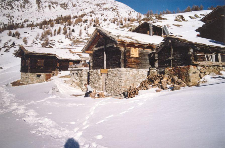Walliser Schwarzhalsziegen 2001-2004 048.jpg